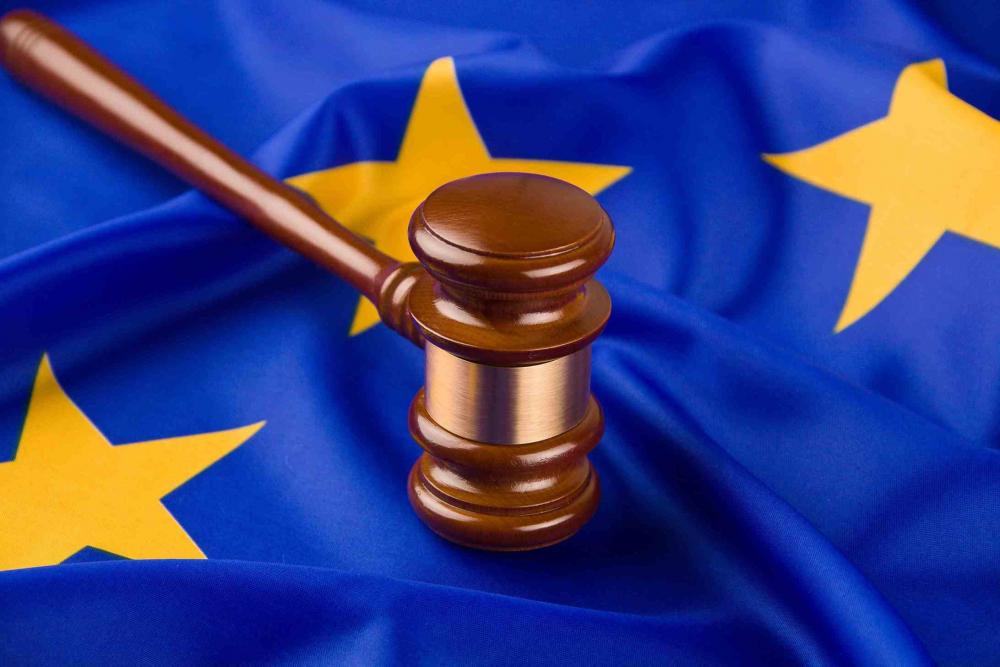 Жалоба в Европейский Суд по правам человека - образец
