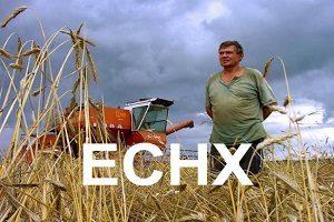 Декларация по единому сельскохозяйственному налогу