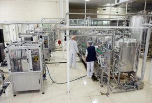 Срок годности сметаны: условия и время для хранения продукта в открытом и закрытом виде