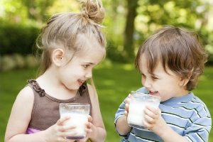 Что можно сделать вкусного и полезного из сухого молока